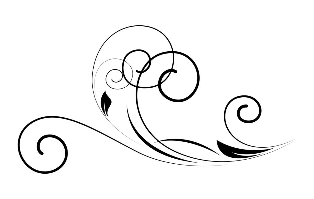 Swirl Floral Vector Design