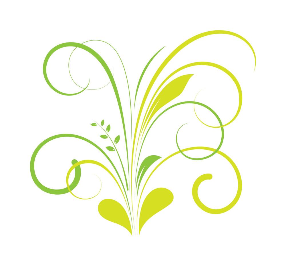 Swirl Flourish Vintage Design Element