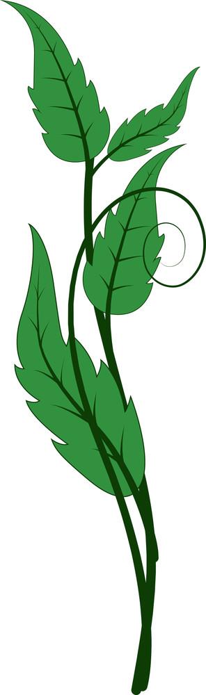 Swirl Leaves Element