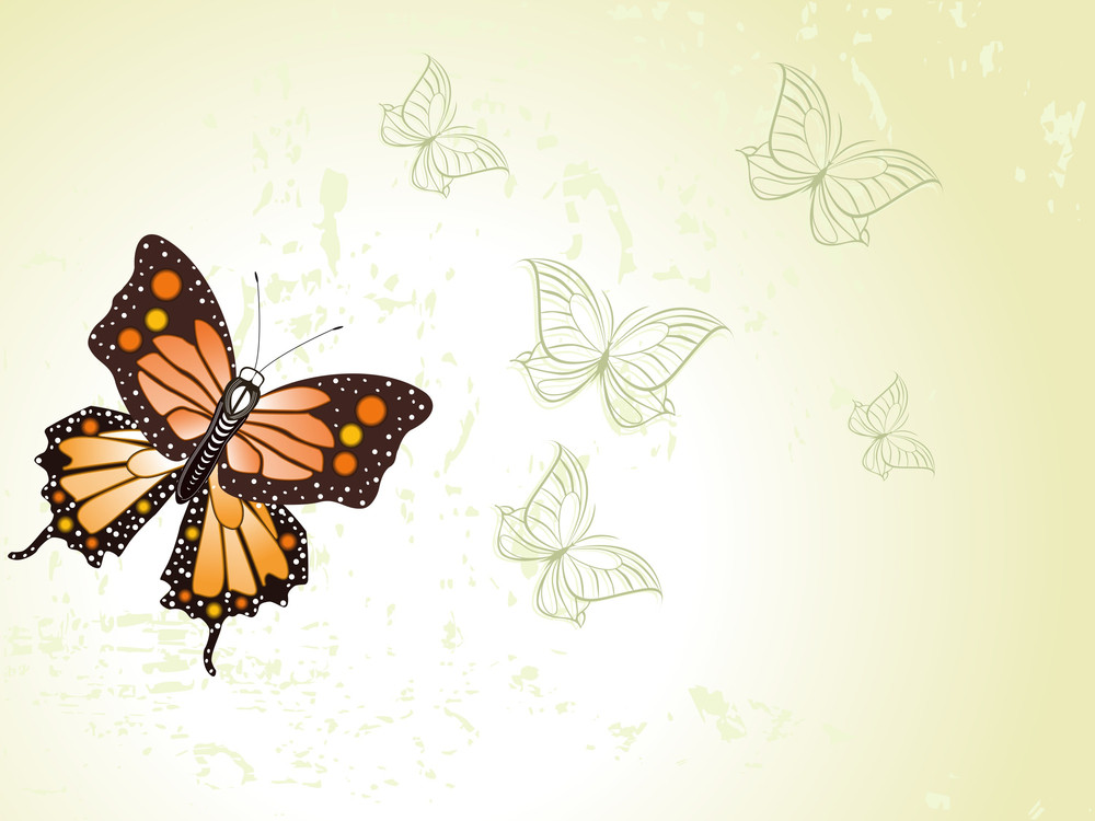 Texture Background With Butterfly