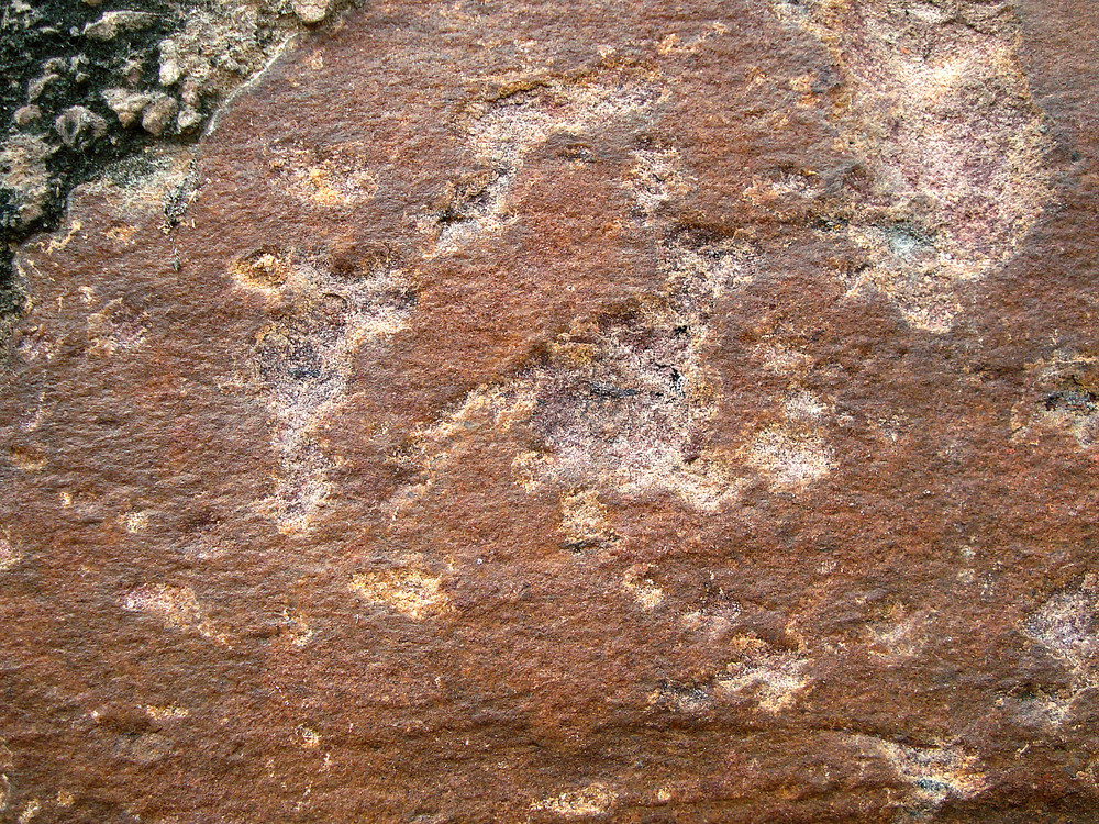 Textured_surface_of_rock