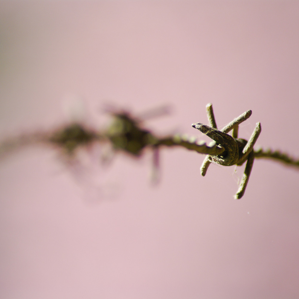 The closeup image of the barbed wire
