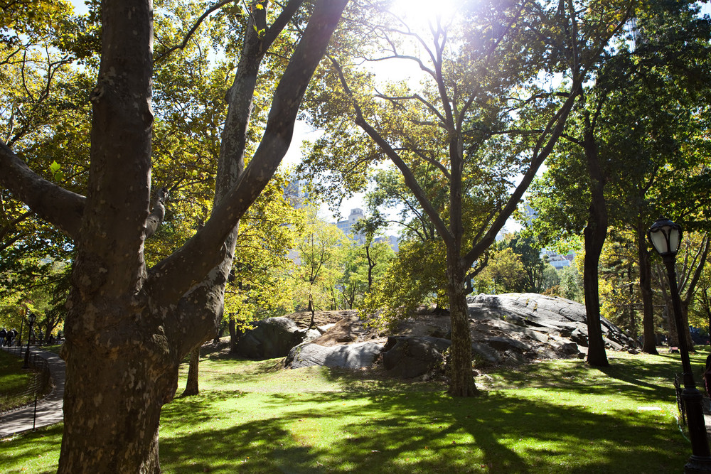 The famous rocks of Central Park in New York City during early fall near the Colombus Circle end. Slight lens flare on the sunlight through the trees.