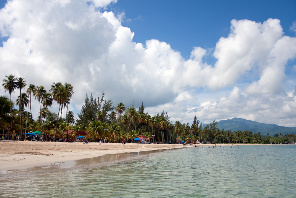 The gorgeous coconut palm lined Luquillo beach in the island located on the large island of Puerto Rico.