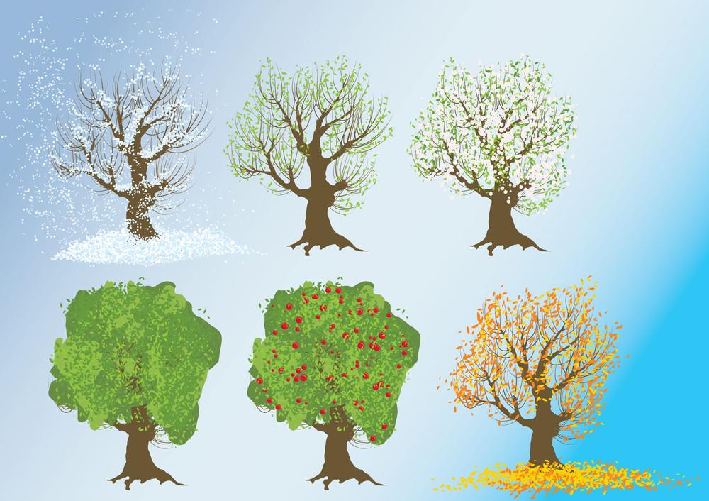 The Seasons. Vector Illustration