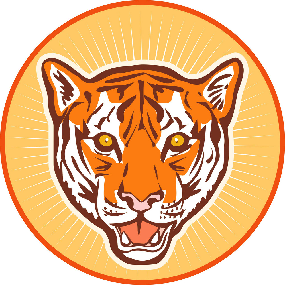 Tiger Front Head