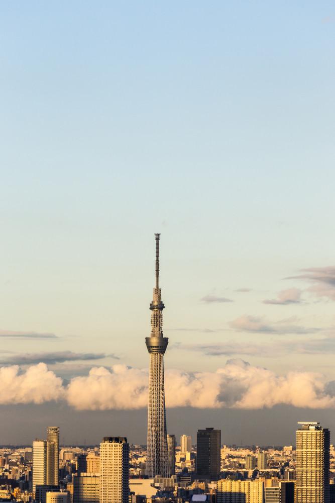 Tokyo cityspace sunset view
