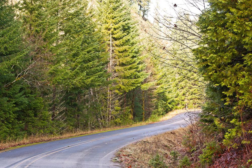 Travel Mountain Road