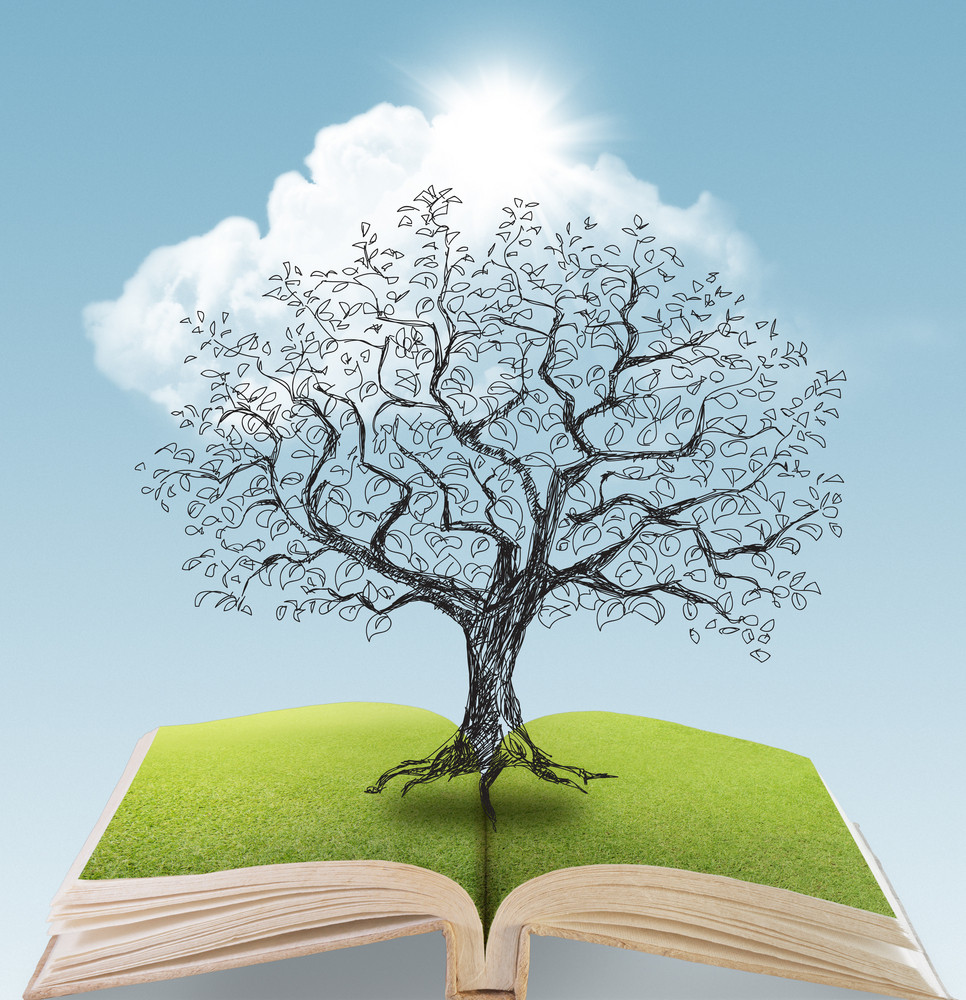 Tree Being Drawn Over Open Book 2