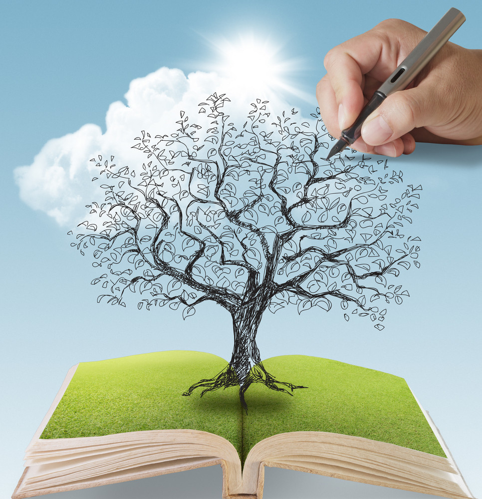 tree being drawn over open book royalty free stock image