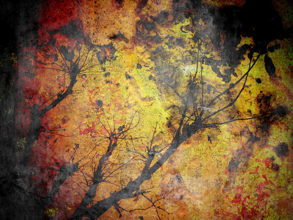 Tree Silhouette On Rusty Background