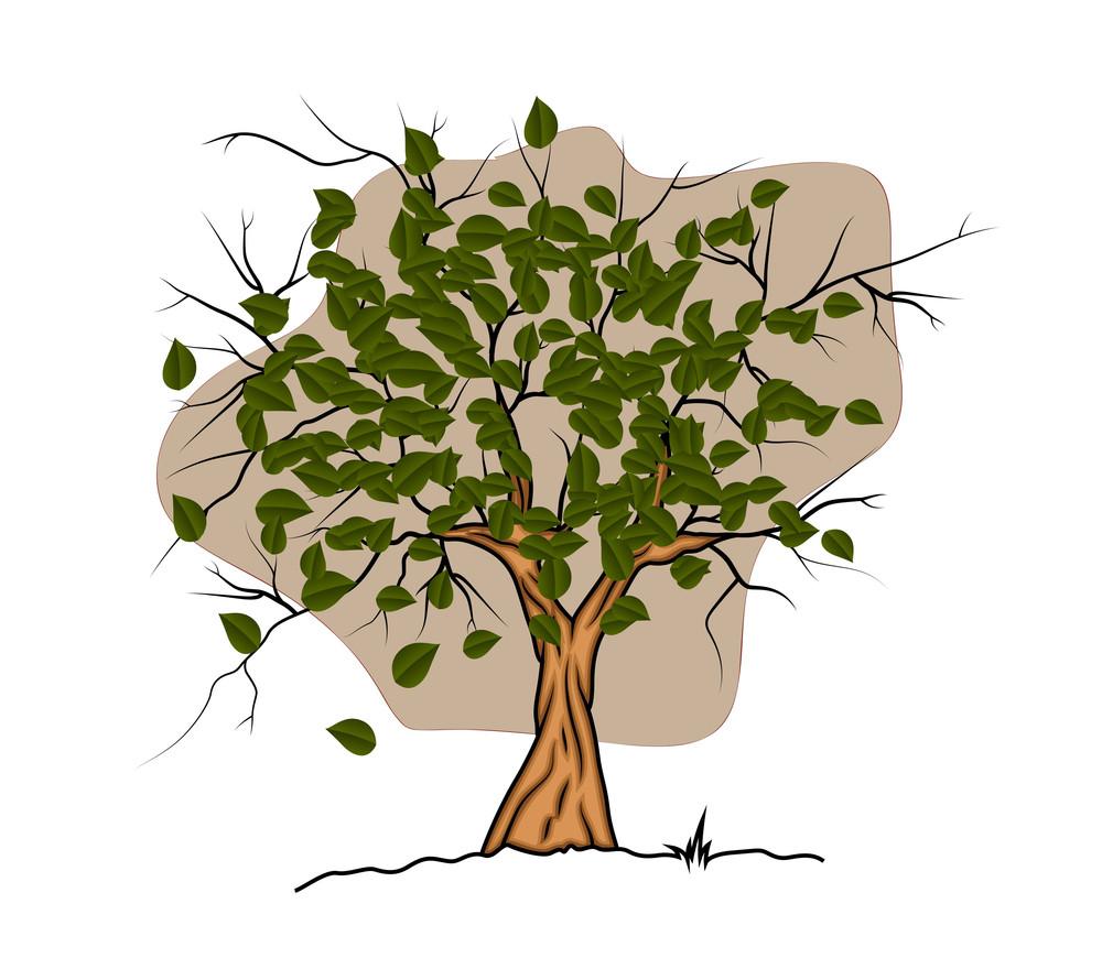 Tree Vector Design