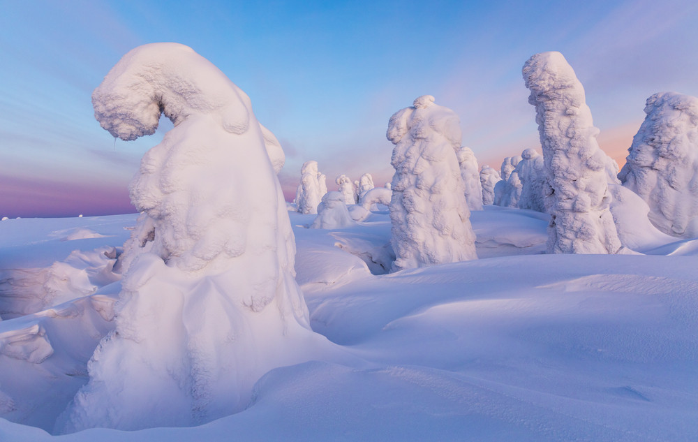 Trees buried under heavy snowfall at sunset