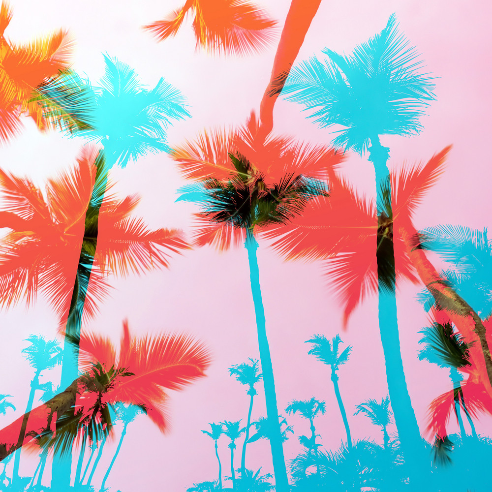 Tropical coconut palm tree silhouettes illustration over a purple sunset sky in vector format.