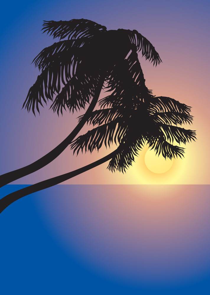 Tropical Sunset. Vector Background.