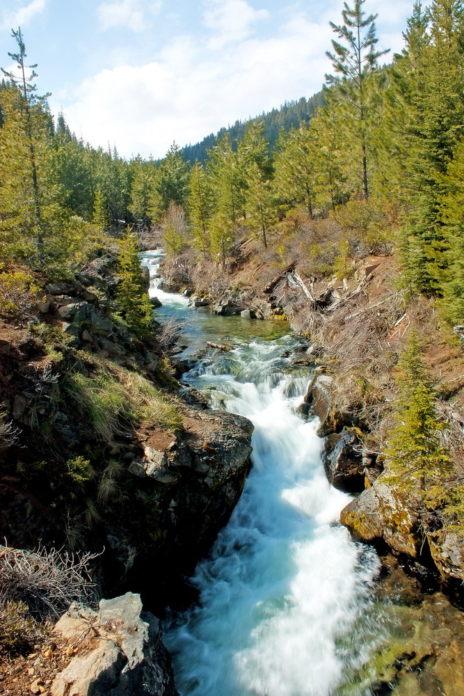 Tumalo Creek
