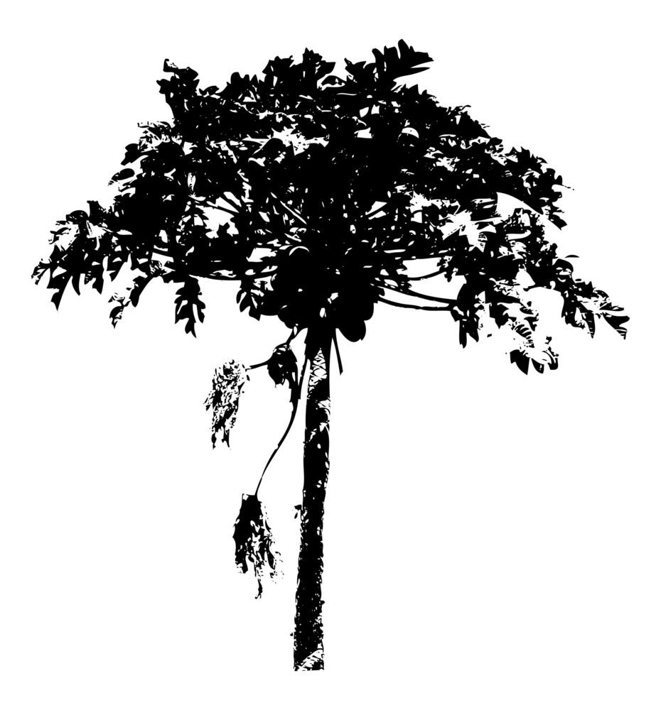 Urban Tree Vector