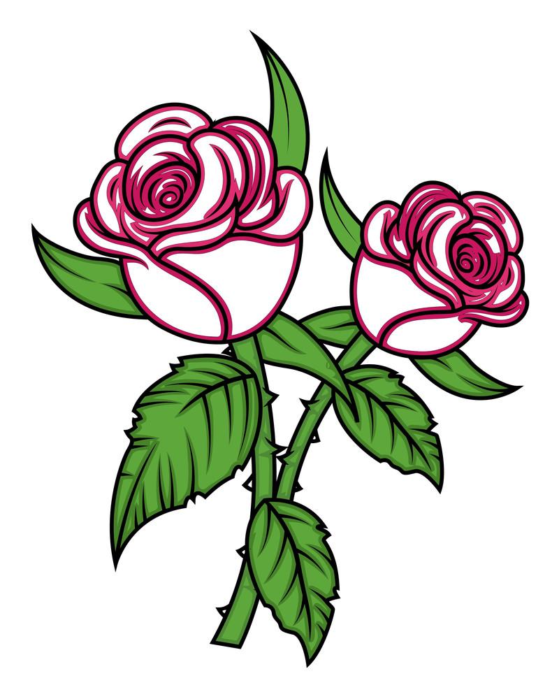 Valentine Roses Vector