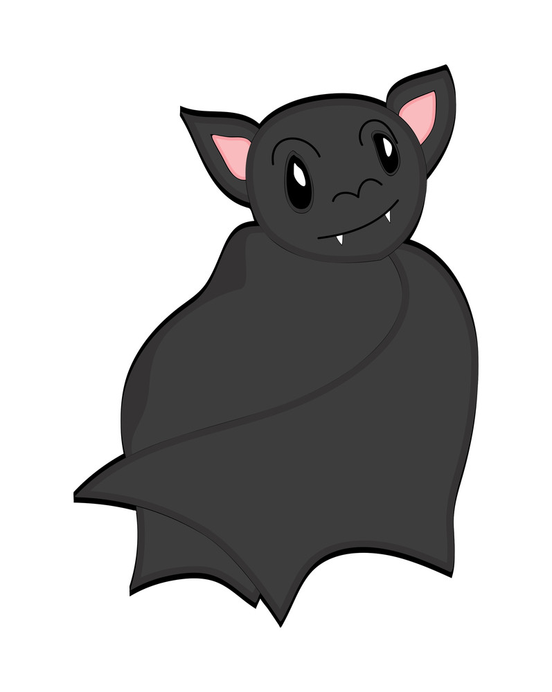 vampire bat bird royalty free stock image storyblocks