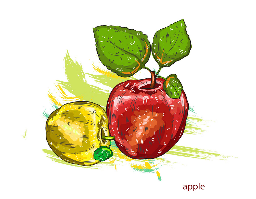 Vector Apples With Colorful Splashes