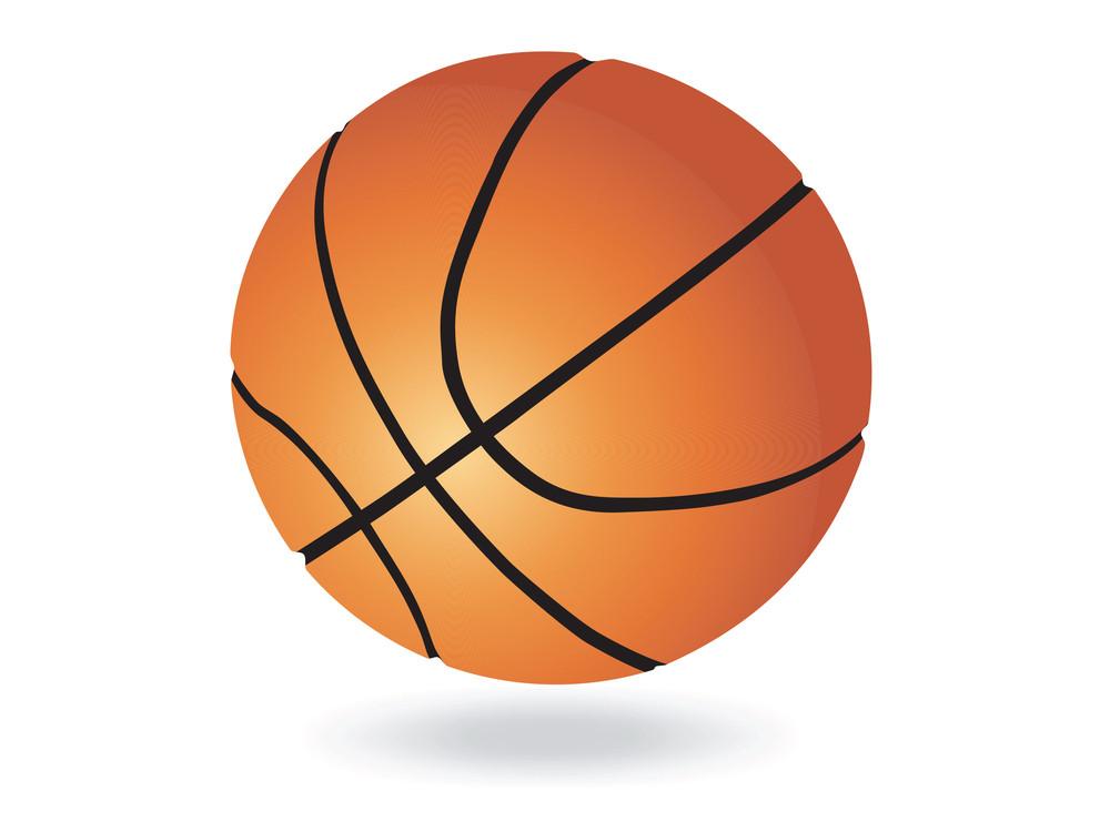 Vector Basketball Ball