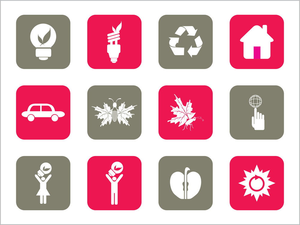 Vector Beautiful Icon Set