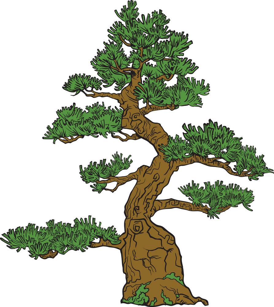 Vector Bonsai Tree