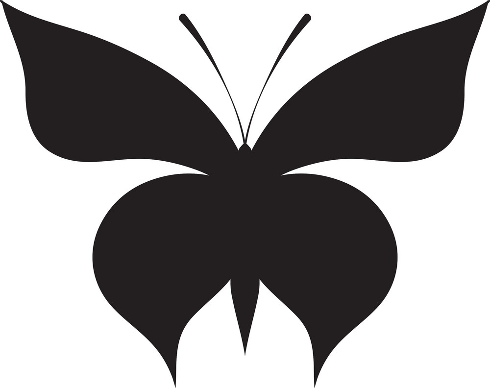 Vector Butterfly
