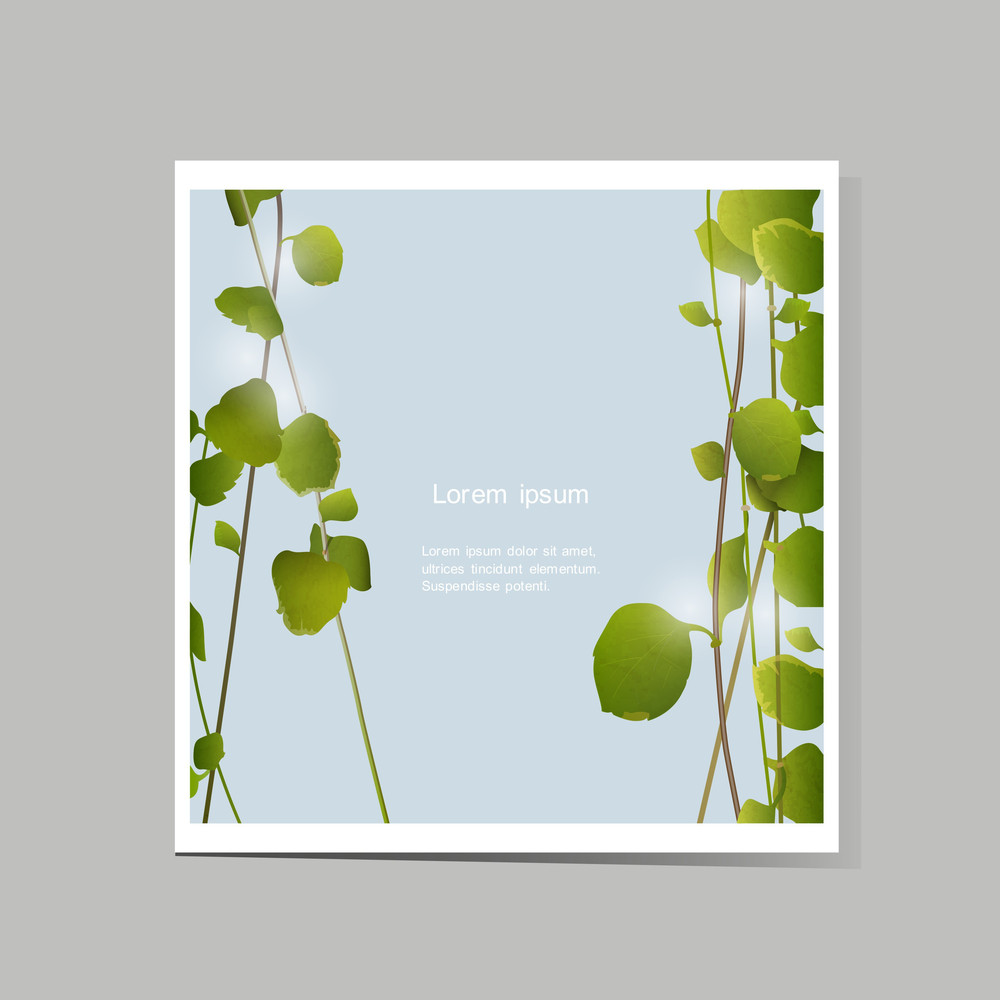 Vector Card With Green Leaves
