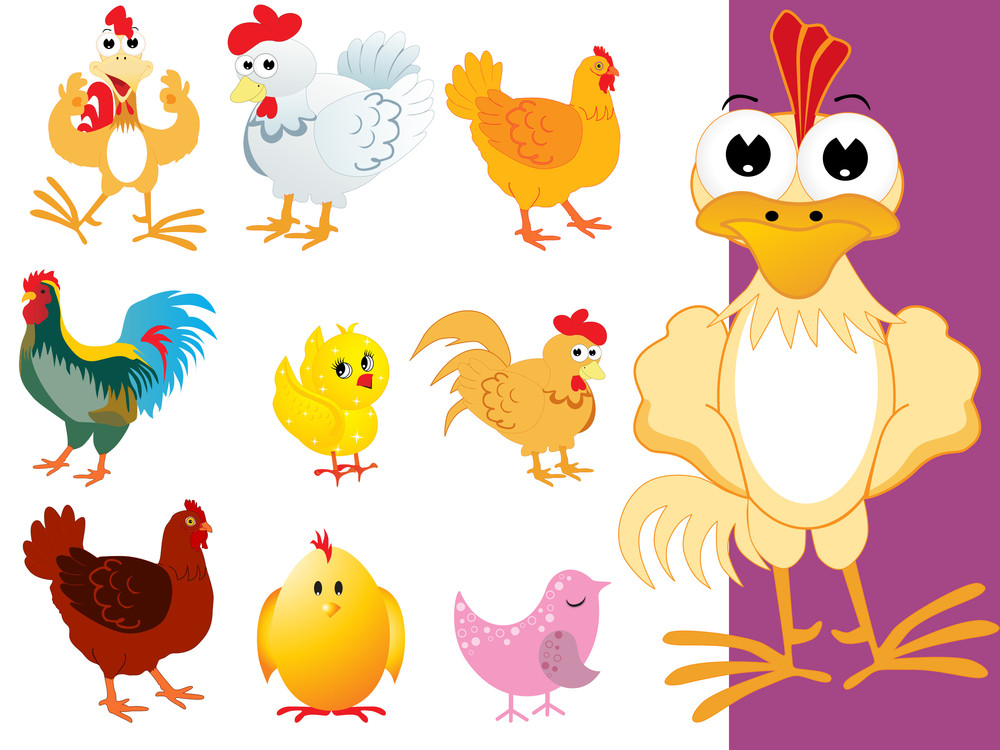 Vector Collection Of Colorful Bird