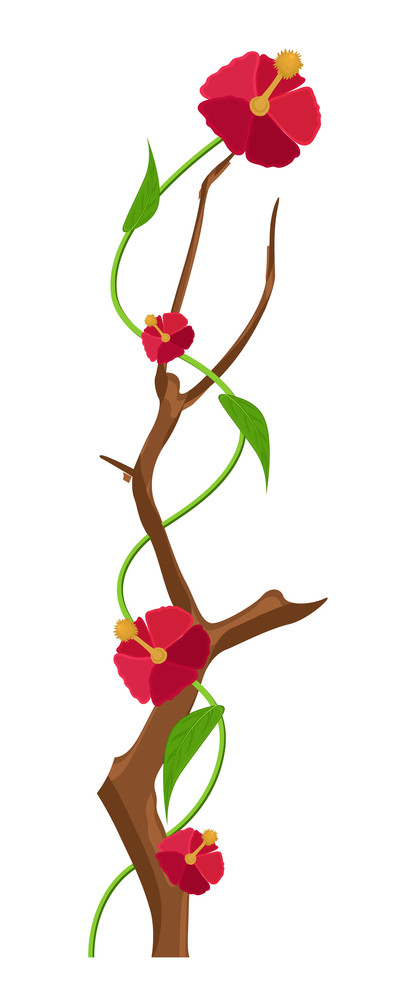 Vector Decorative Flowers Branch