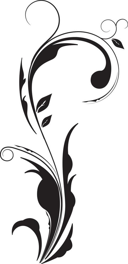 Vector Floral Curl