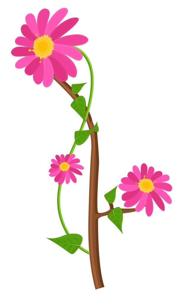 Vector Flowers Branch