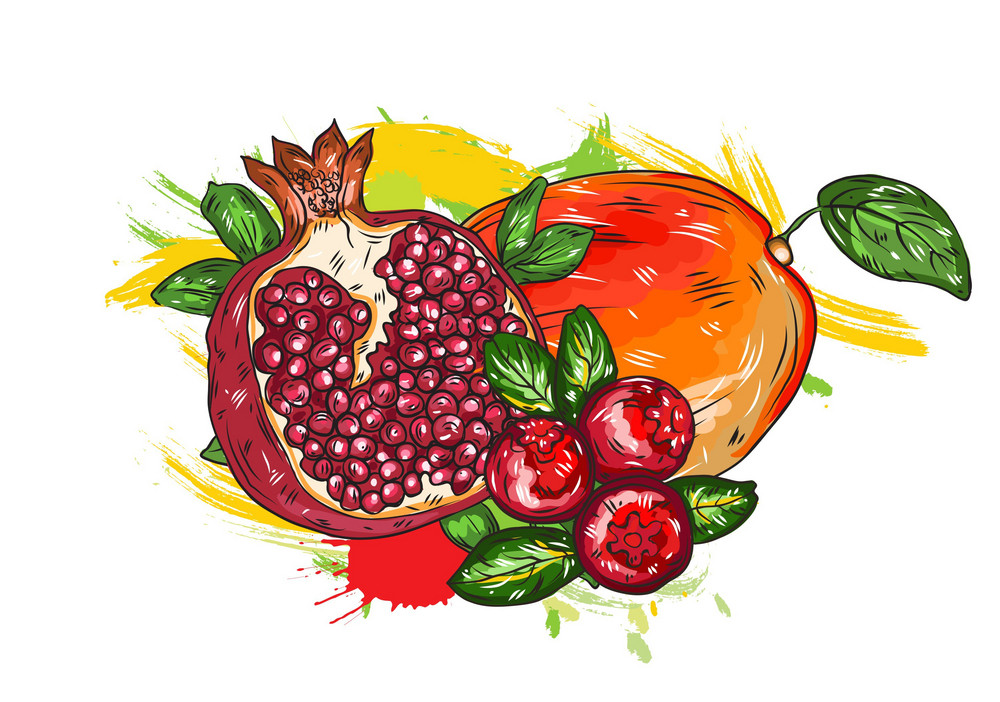 Vector Fruits With Colorful Splashes