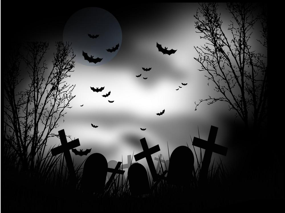 Vector Graveyard