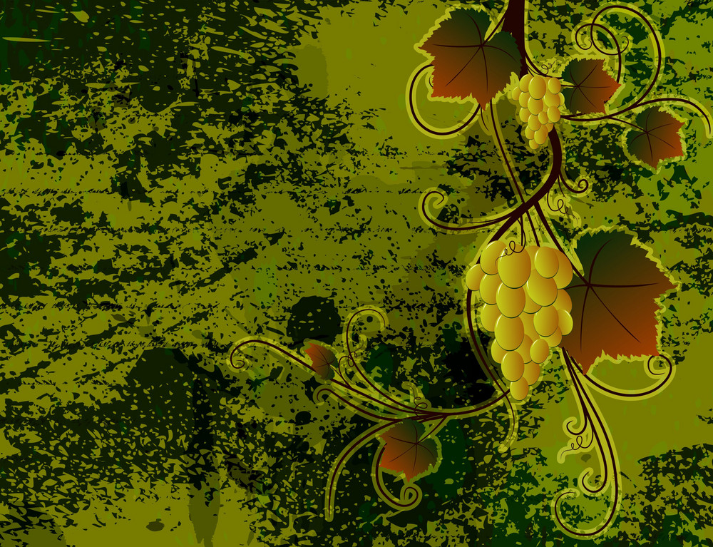 Vector Grunge Autumn Background With Grapes