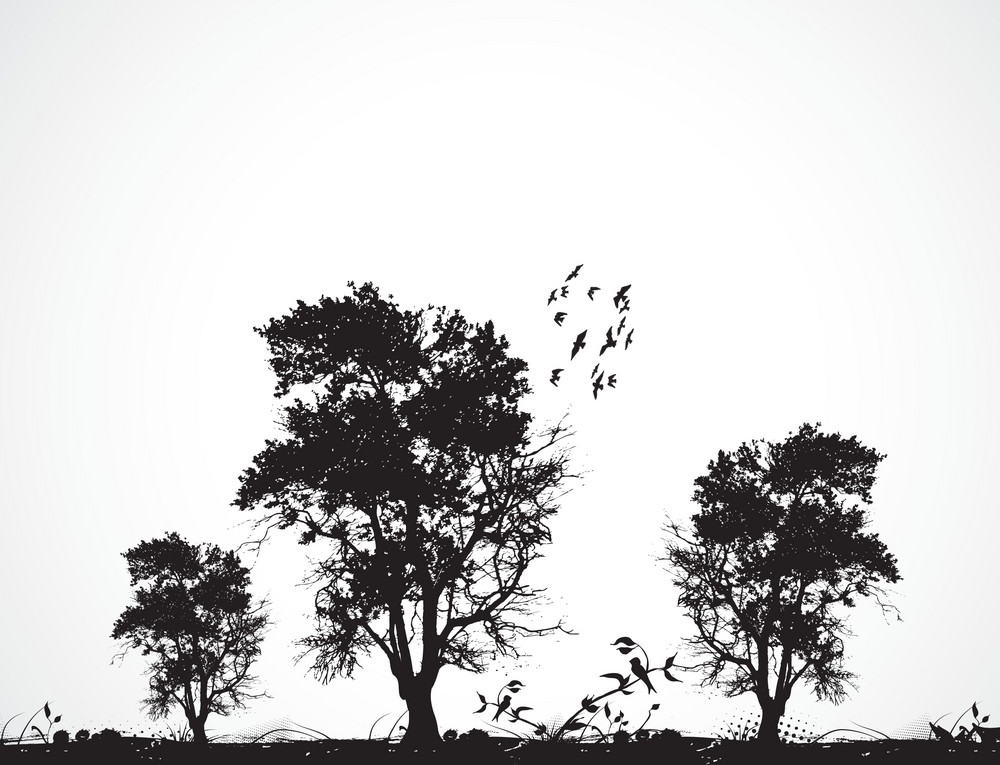 Vector Grunge Background With Trees