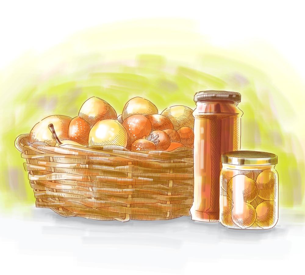 Vector Hand Drawn Food Ingredients