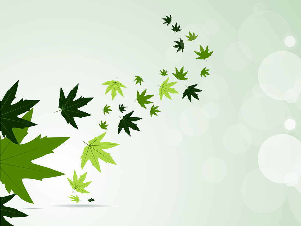 Vector Illustraion Of Fly Green Leaves.