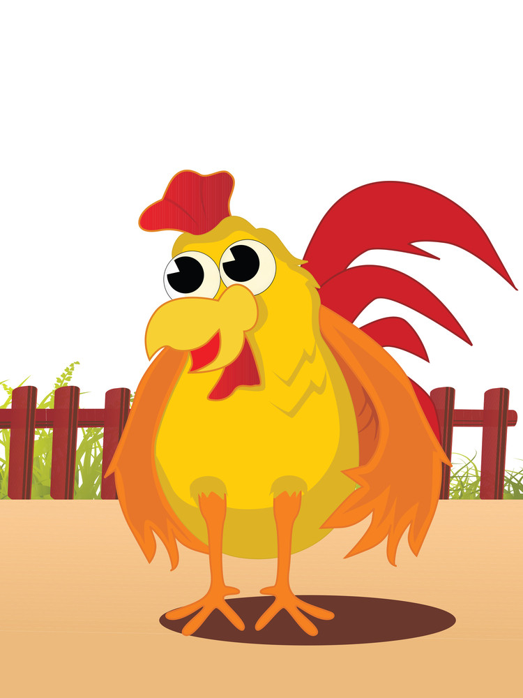 Vector Illustration Of Cock