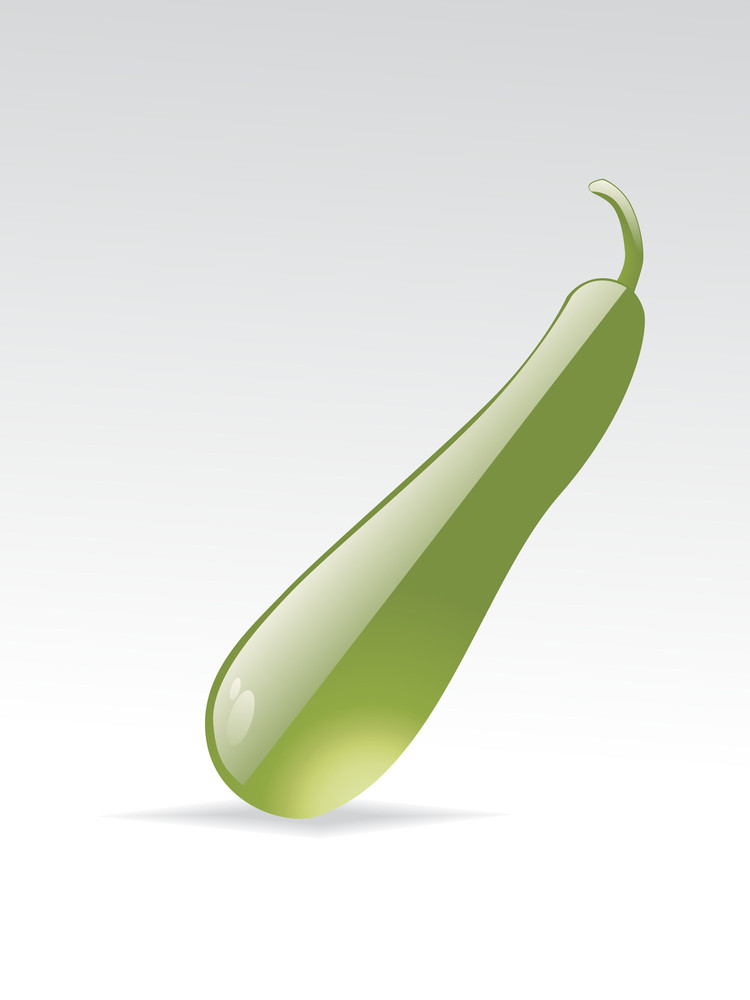Vector Isolated Green Vegetable