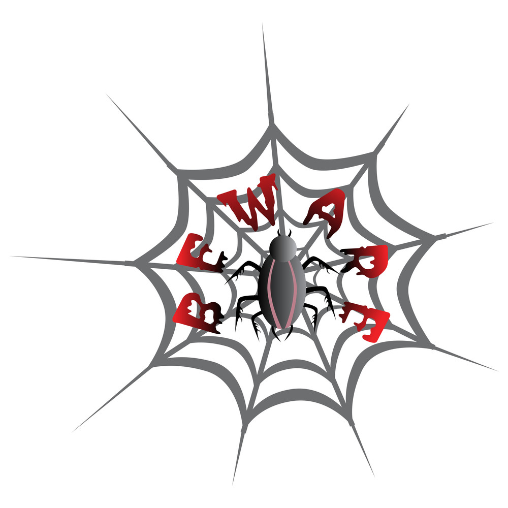 Vector Isolated Spider On Background