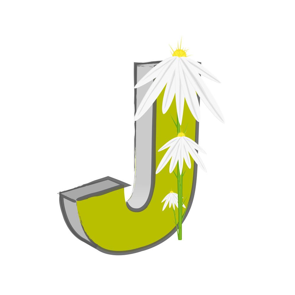 Vector J Alphabet With Flower