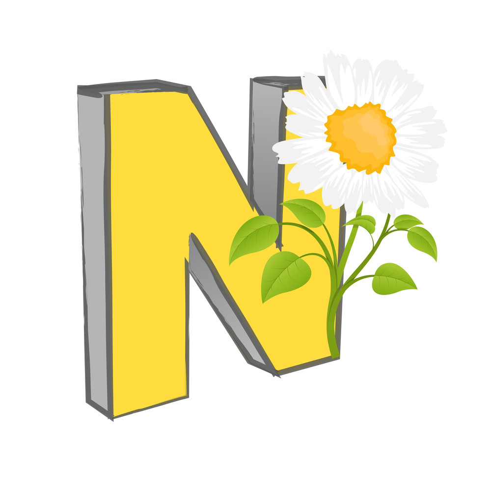 Vector N Alphabet With Flower