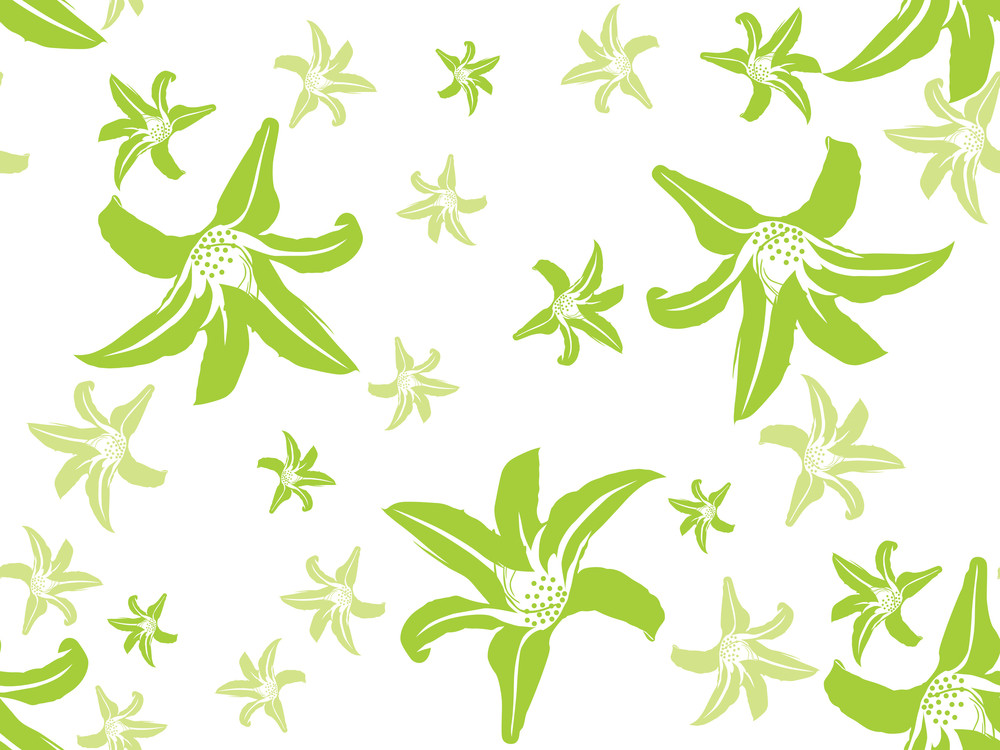 Vector Natural Pattern Background