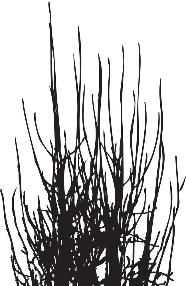 Vector Normal Tree