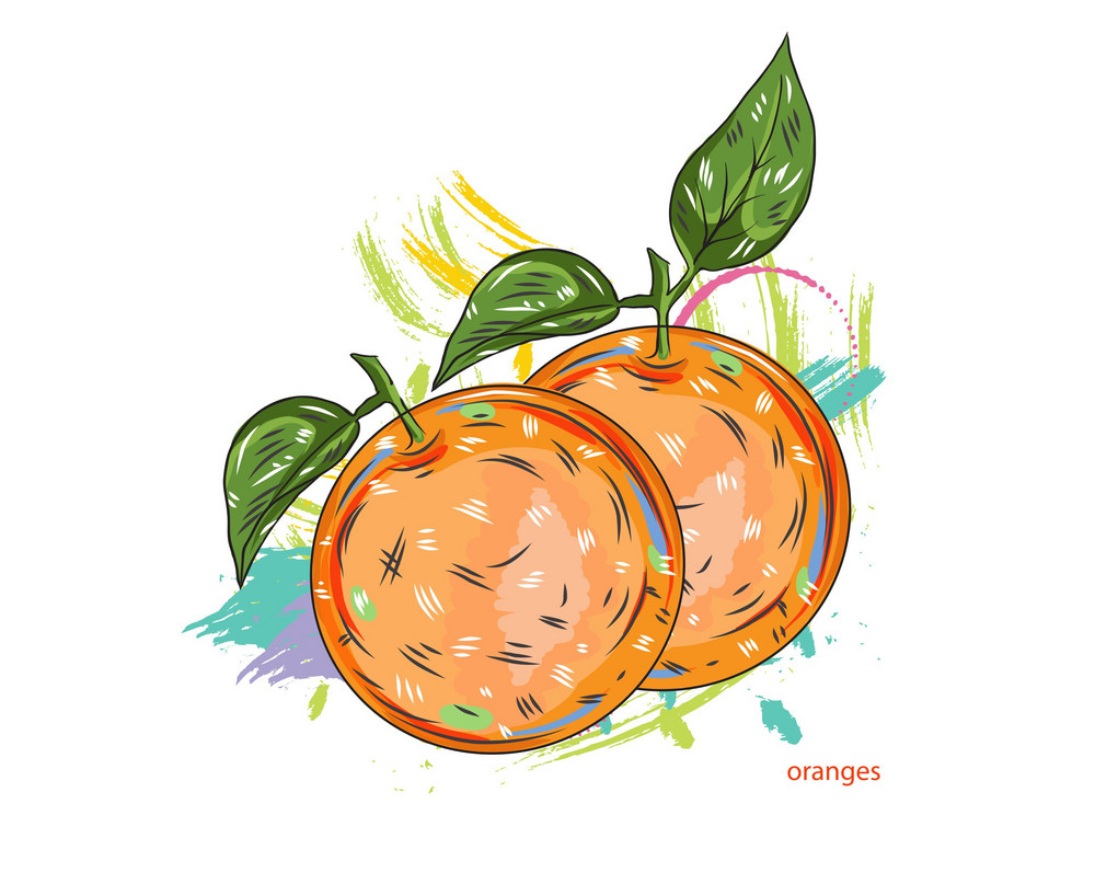 Vector Oranges With Colorful Splashes