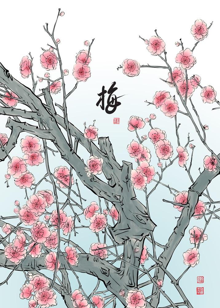 Vector Plum Blossom. Translation: Plum