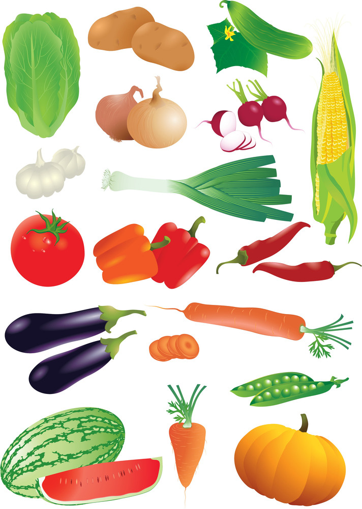 Vector Set Of Raw Vegetables. Detailed And Realistic.