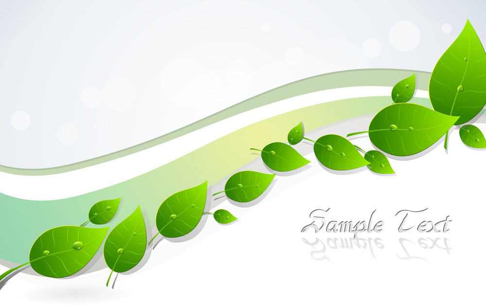 Vector Spring Background With Leaves